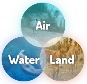 Diagram for the Florida Environmental Interface Portal