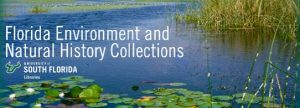 Banner image for Florida Environment and Natural History Collections