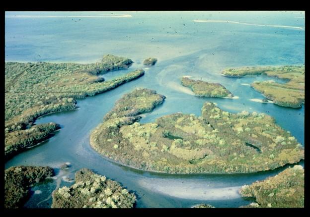 photo of bullfrog creek from ELAPP digital collections