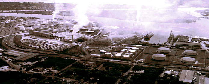 TBE-Plant