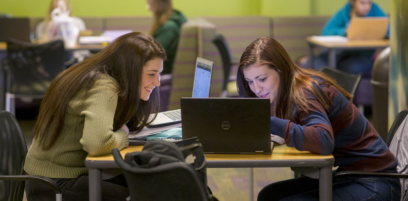 USF Undergrad students working together on a laptop.
